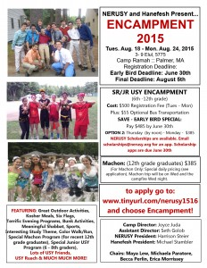 Application Flyer 2015